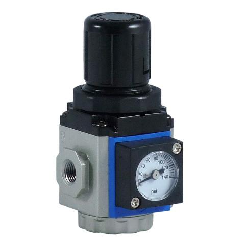 Pressure Regulator Mgr200 06